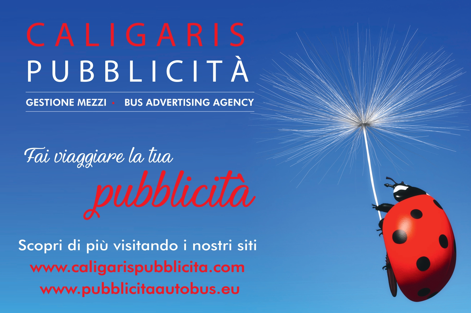 pubblicita_dinamica_bus_pullman_autobus_cuneo_asti_torino_saluzzo_bra_alba_fossano_savigliano_mondovi_alessandria_piemonte